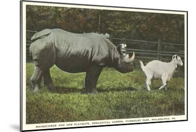 Rhino and Goat, Zoo, Philadelphia, Pennsylvania--Mounted Art Print