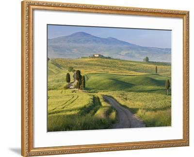 Track, San Quirico D'Orcia, Val D'Orcia, Tuscany, Italy-Peter Adams-Framed Photographic Print