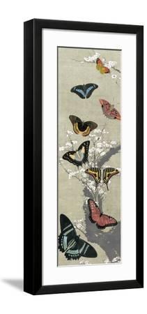 Take Flight II-Vision Studio-Framed Art Print