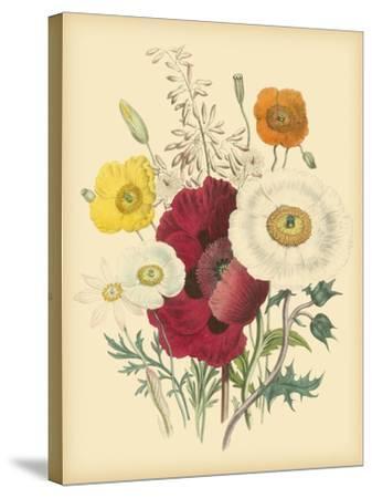 Garden Bouquet II-Jane W^ Loudon-Stretched Canvas Print