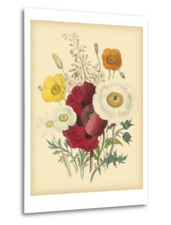 Garden Bouquet II-Jane W^ Loudon-Metal Print