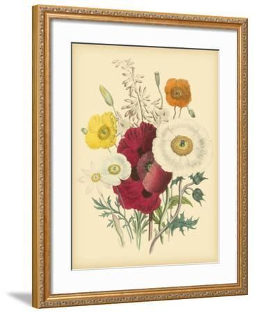 Garden Bouquet II-Jane W^ Loudon-Framed Art Print