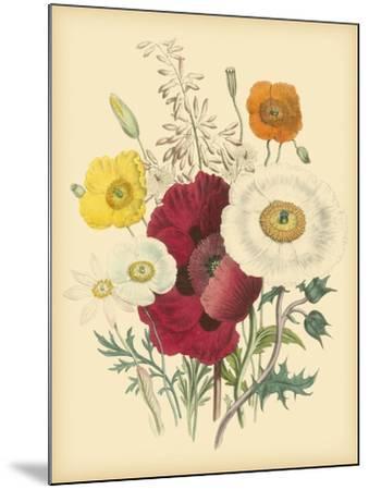 Garden Bouquet II-Jane W^ Loudon-Mounted Art Print