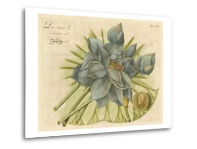 Blue Lotus Flower II--Metal Print