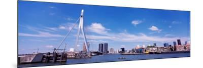 Bridge Across a River, Erasmus Bridge, Nieuwe Maas River, Noordereiland, Rotterdam, South Holland--Mounted Photographic Print