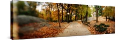 Walkway in a Park, Central Park, Manhattan, New York City, New York State, USA--Stretched Canvas Print