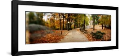 Walkway in a Park, Central Park, Manhattan, New York City, New York State, USA--Framed Photographic Print