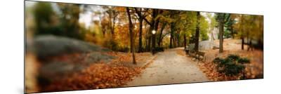 Walkway in a Park, Central Park, Manhattan, New York City, New York State, USA--Mounted Photographic Print