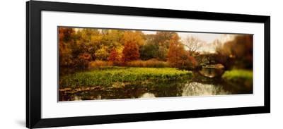 Pond in a Park, Central Park, Manhattan, New York City, New York State, USA--Framed Photographic Print