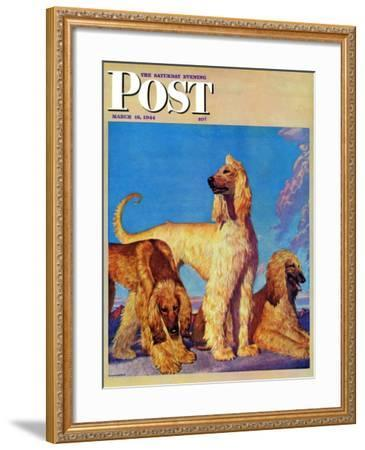 """Afghan Hounds,"" Saturday Evening Post Cover, March 18, 1944-Rutherford Boyd-Framed Giclee Print"