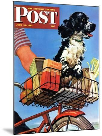 """""""Butch's Bike Ride,"""" Saturday Evening Post Cover, June 23, 1945-Albert Staehle-Mounted Giclee Print"""
