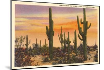 Saguaro Cacti--Mounted Premium Giclee Print