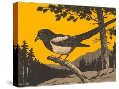 Woodcut of Magpie--Stretched Canvas Print