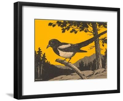 Woodcut of Magpie--Framed Art Print