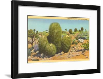 Barrel Cactus--Framed Art Print