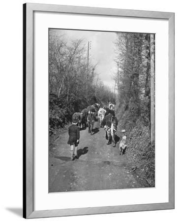 Boy and His Dog Driving the Cows in for Milking--Framed Photographic Print