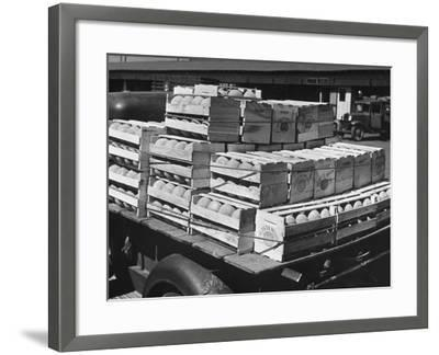 A Truckload of Freshly Harvested Canteloupes in Crates--Framed Photographic Print