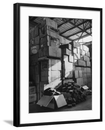 View of Warehouse Full of Boxes of Obsolete Wac Hats--Framed Photographic Print