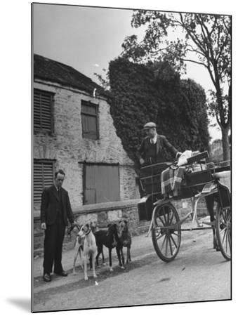 Greyhound Racing Dogs Being Walked--Mounted Photographic Print