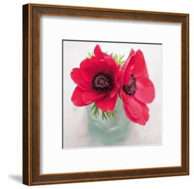 Red Anemones-Ian Winstanley-Framed Giclee Print