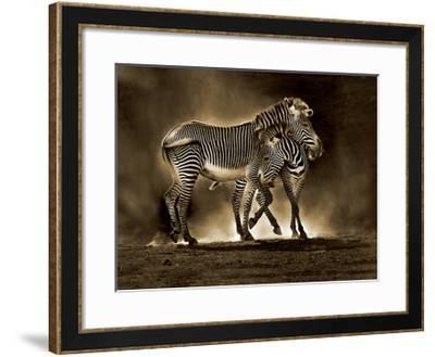 Zebra Grevys-Marina Cano-Framed Giclee Print