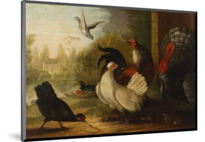 A Turkey, a Duck and Poultry in an Ornamental Garden-Marmaduke Cradock-Mounted Premium Giclee Print