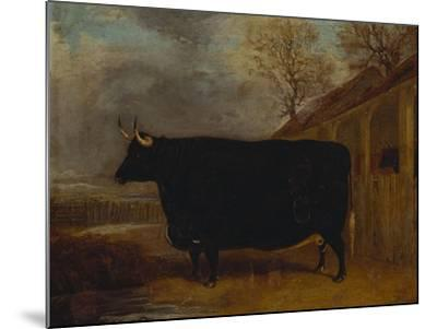 A Black Bull Standing by a Cowshed, an Extensive Landscape Beyond-James Pollard-Mounted Giclee Print