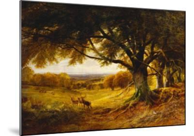 Spithead, Uppark, Sussex-George Cole-Mounted Giclee Print