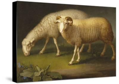A Ram and a Sheep-Johan Wenzel Peter-Stretched Canvas Print