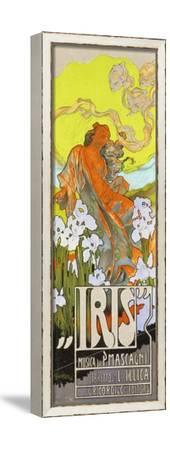 Iris-Adolfo Hohenstein-Framed Stretched Canvas Print