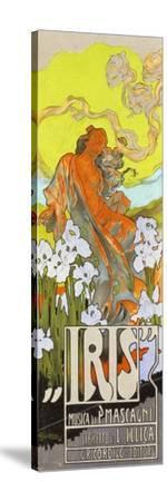 Iris-Adolfo Hohenstein-Stretched Canvas Print