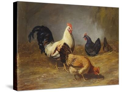 Poultry Feeding-Arthur Fitzwilliam Tait-Stretched Canvas Print