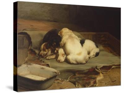 Puppies Sleeping-William Henry Hamilton Trood-Stretched Canvas Print