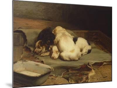 Puppies Sleeping-William Henry Hamilton Trood-Mounted Giclee Print