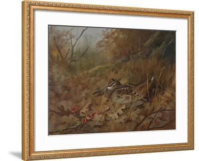 A Woodcock Nesting in Autumn Leaves-Archibald Thorburn-Framed Giclee Print