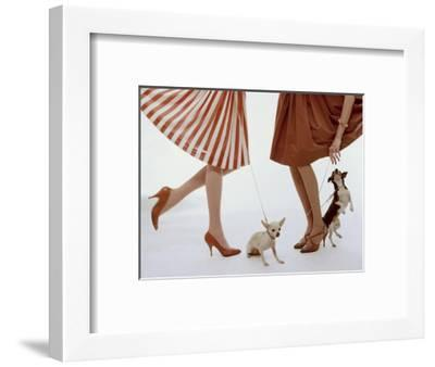 Vogue - February 1959 - Pumps and Pups-William Bell-Framed Premium Photographic Print