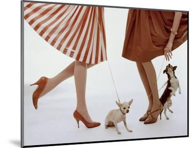 Vogue - February 1959 - Pumps and Pups-William Bell-Mounted Premium Photographic Print