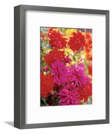 House & Garden - April 2003-Alexandre Bailhache-Framed Premium Photographic Print