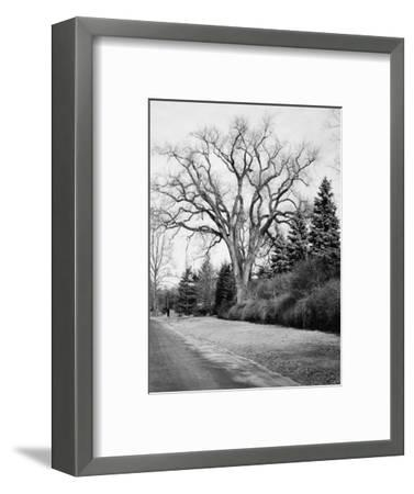 House & Garden - January 1945-Tom Leonard-Framed Premium Photographic Print
