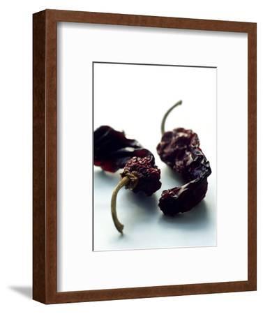 Gourmet - June, 2005-Romulo Yanes-Framed Premium Photographic Print