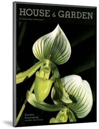 House & Garden Cover - June 1934-Anton Bruehl-Mounted Premium Giclee Print