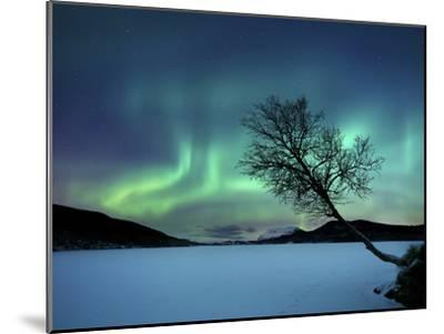 Aurora Borealis over Sandvannet Lake in Troms County, Norway-Stocktrek Images-Mounted Photographic Print