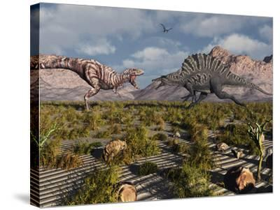A Confrontation Between a T. Rex and a Spinosaurus Dinosaur-Stocktrek Images-Stretched Canvas Print
