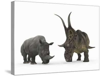 An Adult Diabloceratops Compared to a Modern Adult White Rhinoceros-Stocktrek Images-Stretched Canvas Print