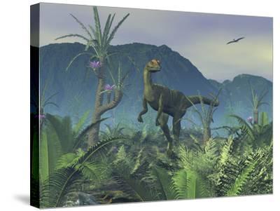 A Colorful Adult Male Dilophosaurus Explores a Hilltop-Stocktrek Images-Stretched Canvas Print