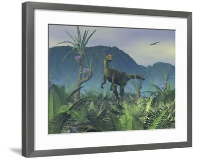 A Colorful Adult Male Dilophosaurus Explores a Hilltop-Stocktrek Images-Framed Photographic Print