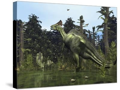 A Lambeosaurus Rears onto its Hind Legs in Response to a Threat-Stocktrek Images-Stretched Canvas Print