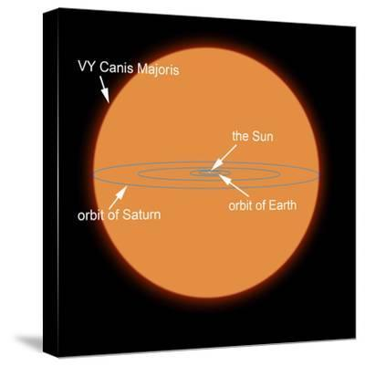 A Diagram Comparing the Sun to VY Canis Majoris-Stocktrek Images-Stretched Canvas Print