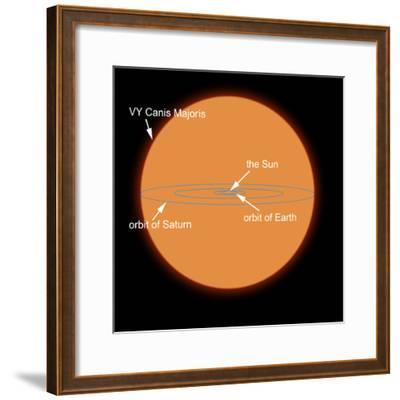 A Diagram Comparing the Sun to VY Canis Majoris-Stocktrek Images-Framed Photographic Print