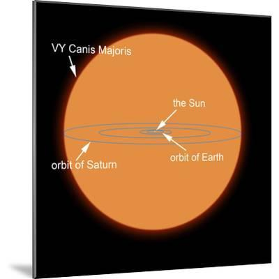 A Diagram Comparing the Sun to VY Canis Majoris-Stocktrek Images-Mounted Photographic Print
